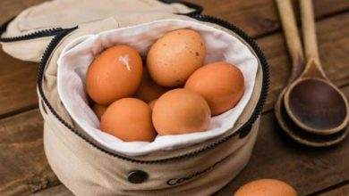 Photo of 7 amazing Health Benefits of Eggs – अंडा खाने के फायदे